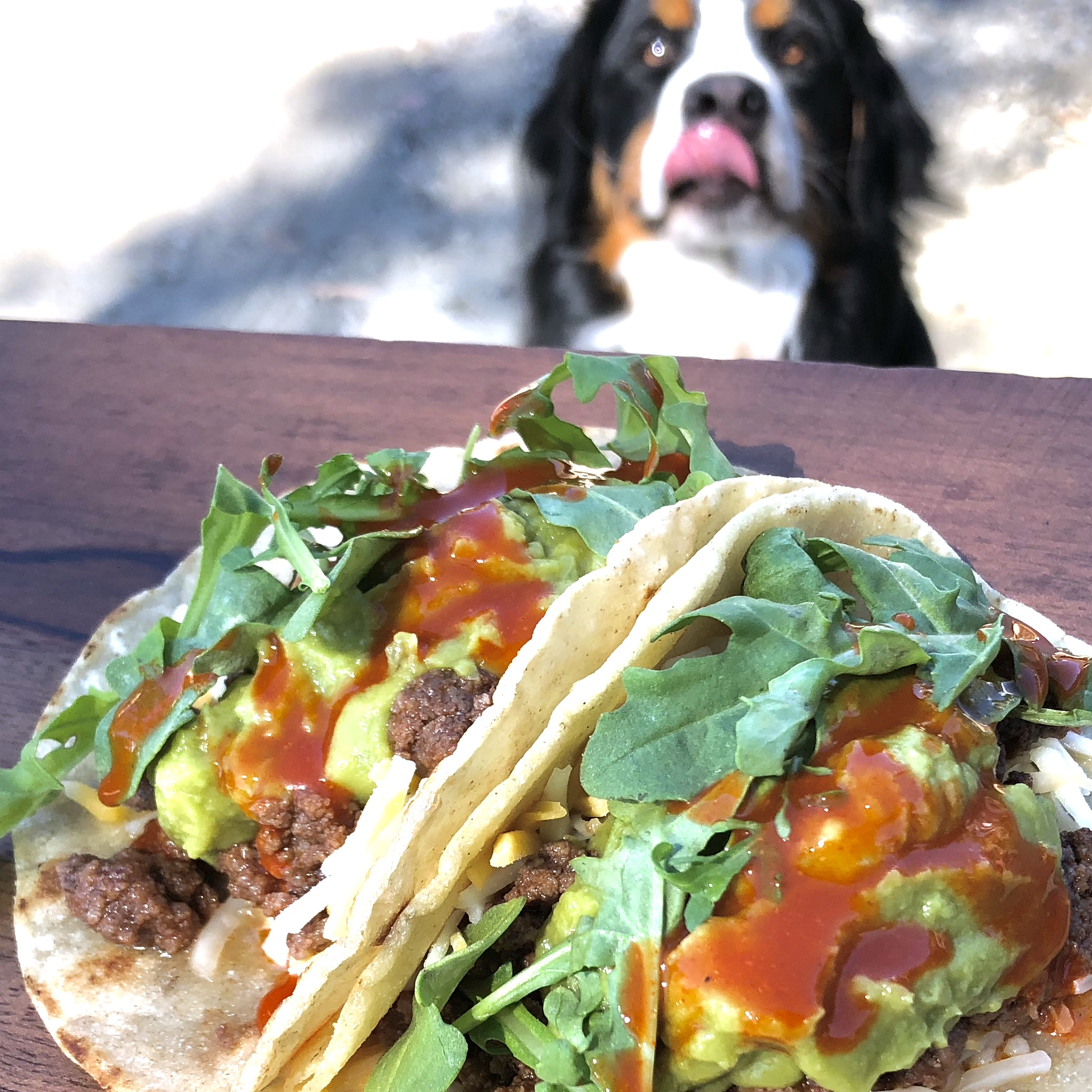 Family Favorite Taco Meat Recipe